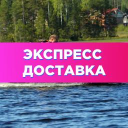 Акция! Экспресс доставка в Москве